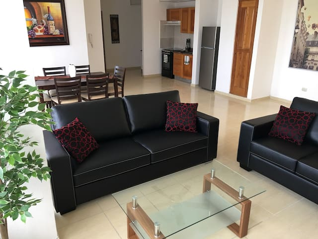 Beautiful apartment fully equipped in Gazcue