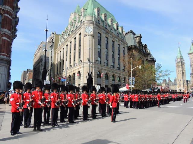 5.-  Traveller in Ottawa