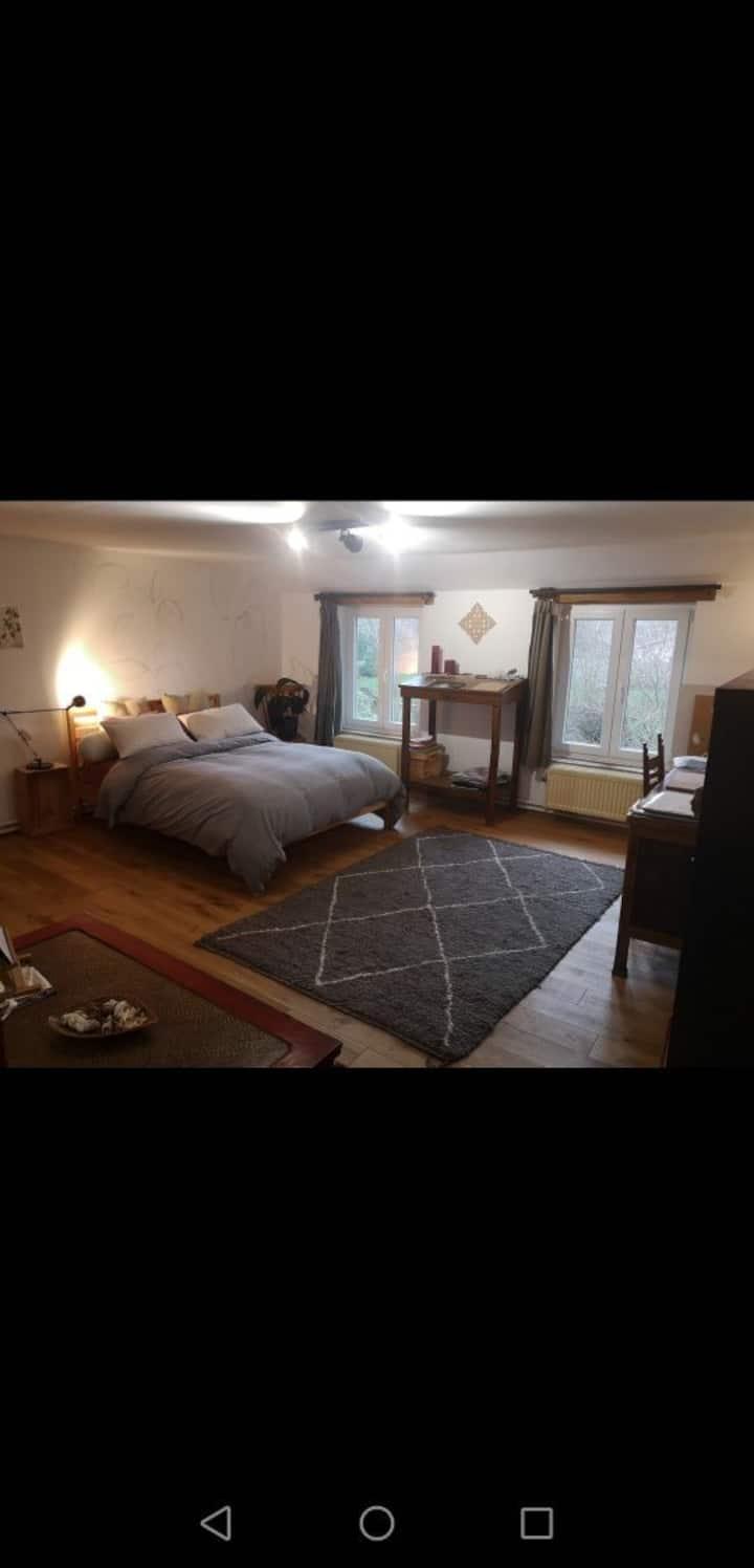 Grande et lumineuse chambre à louer