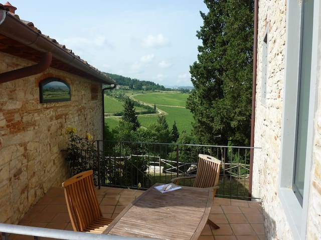 Lovely vineyard apartment near Florence! - Pelago - Flat
