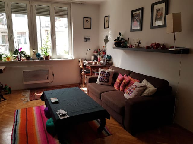 Quiet apartement in the heart of Buda - long term