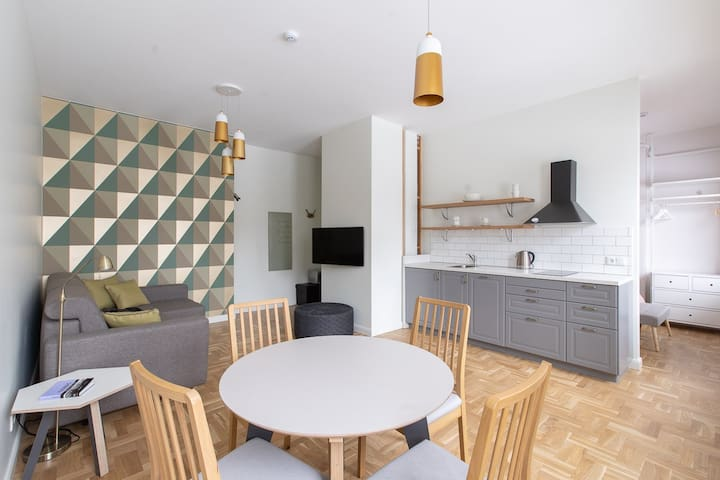 Newly Renovated Apartment in Laisves avenue