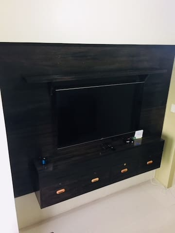55' TV with TV Plus
