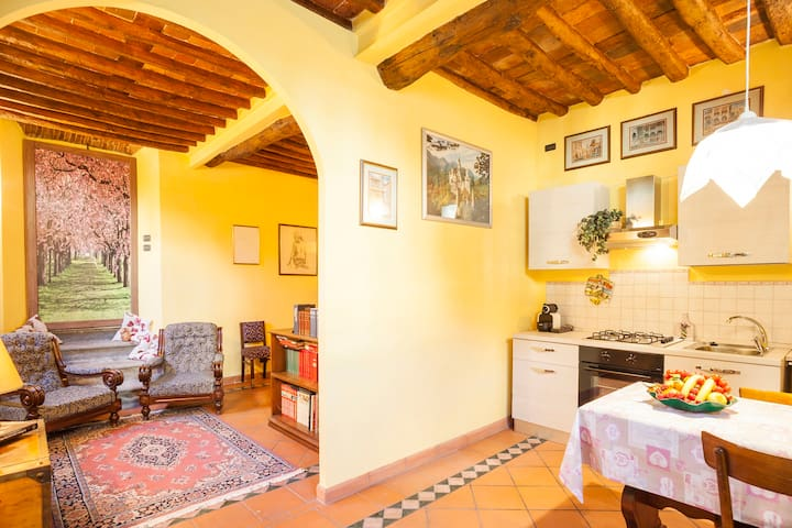 Wanda's Apartment in the very heart of Lucca