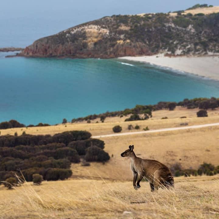 Snelling Beach Escape - sea views on 520 acre farm