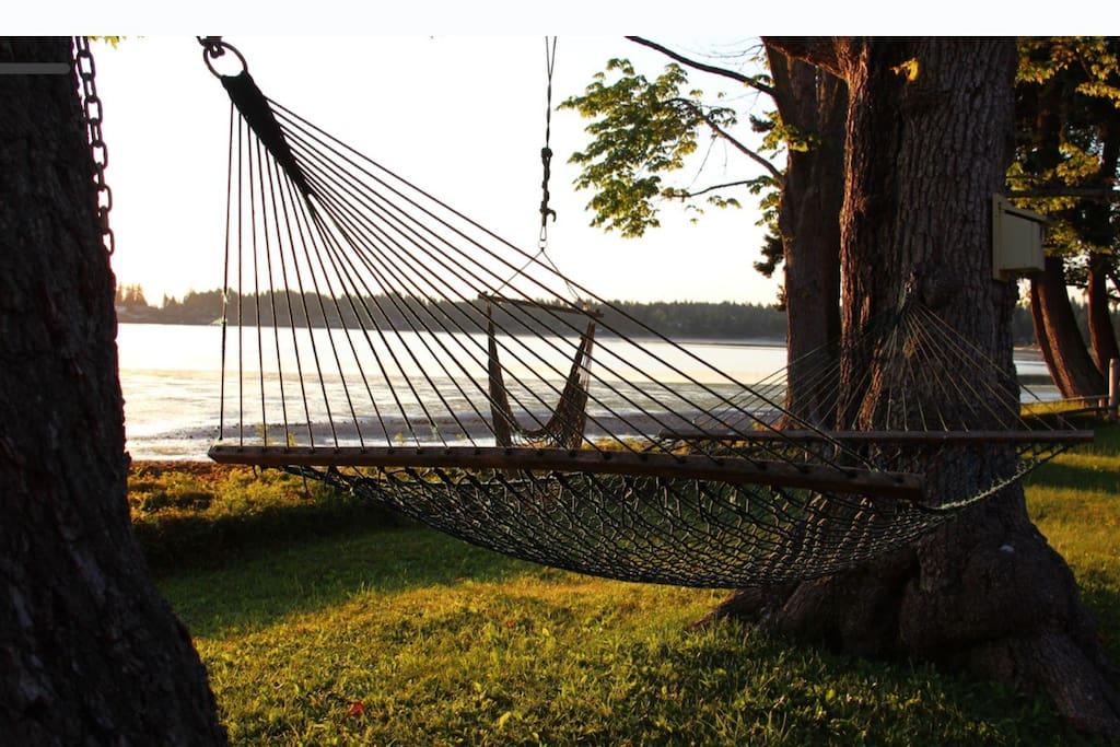Relax in our hammock