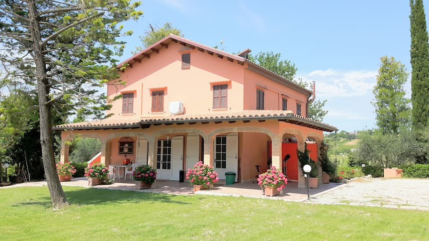 The house in the country - Cossignano - Bed & Breakfast