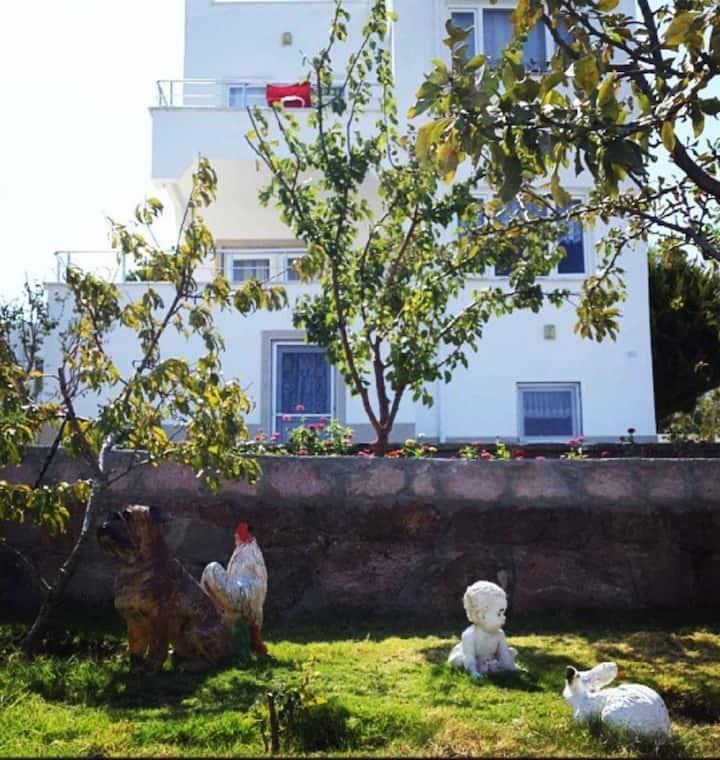 Akliman'da  Denize Sıfır Villa