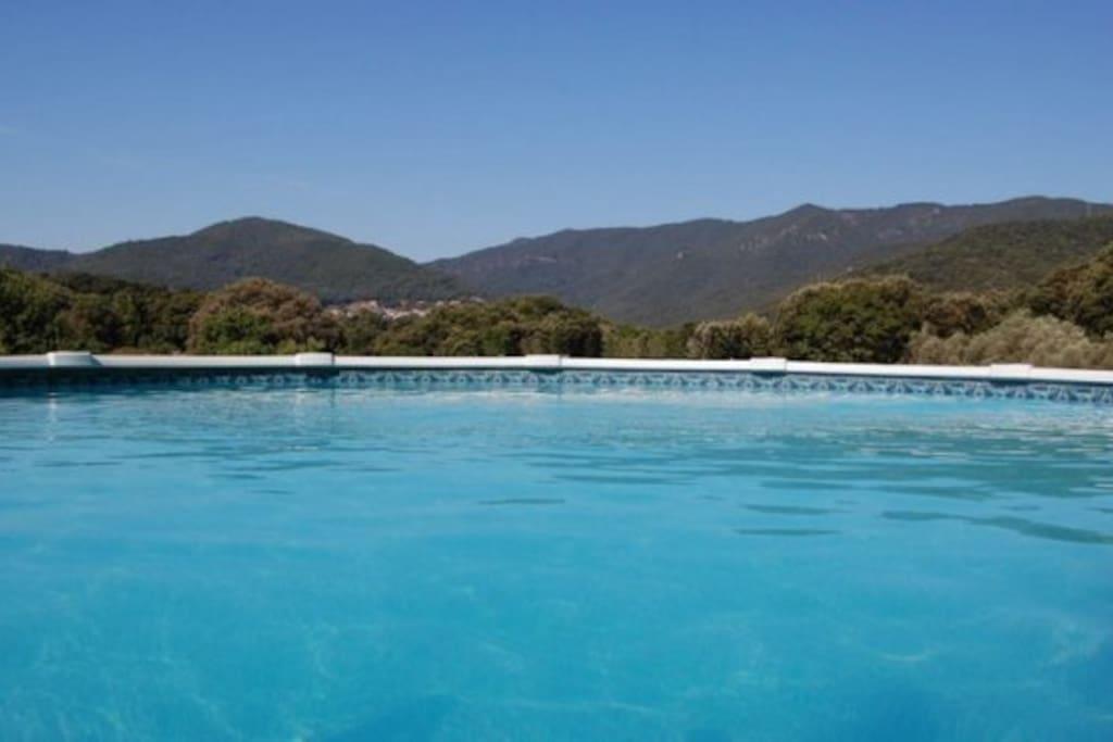 Vue de la piscine (hors sol)