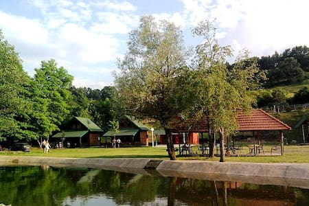 Beautiful log cabin by the river - Lopatnica