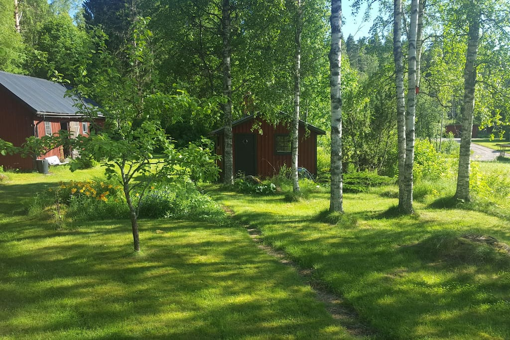 Garden with sauna and outbuilding