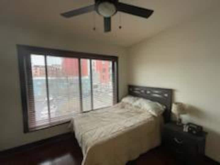 Luxury Apt in Shockoe Bottom