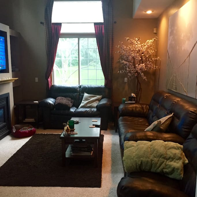 Comfortable living room with two couches (large couch is very comfortable to sleep on), lazy boy, fire place and 56 inch TV