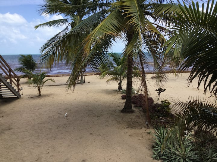 La Tia Cabana, beachfront, 2 bedroom