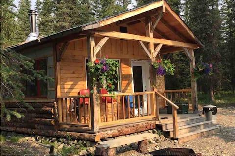 Tim's Cabin near Denali NP
