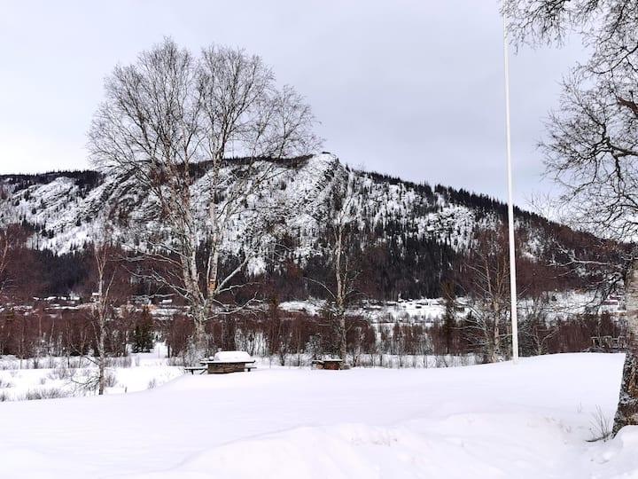 Nybyggd timmerstuga nära allt i Funäsdalen