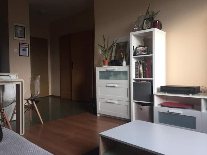 cozy apartment COP24 Katowice