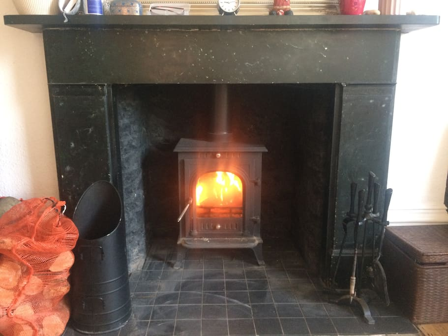 Keep yourselves toasty warm with the woodburning stove
