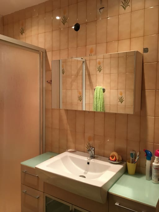 walk-in (European) shower
