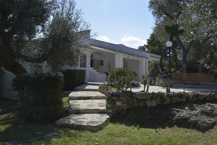 'Villa degli ulivi' con 1.200 mq di giardino