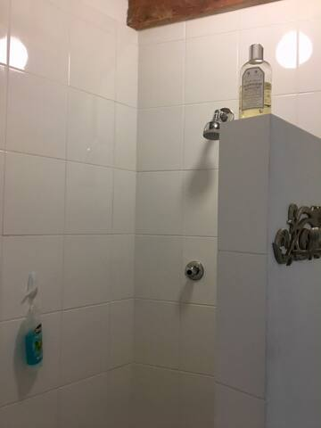 Adjoining bathroom with shower