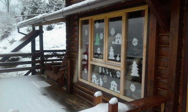 pet friendly vacation rentals, apartments & houses in mateševo, Esszimmer dekoo
