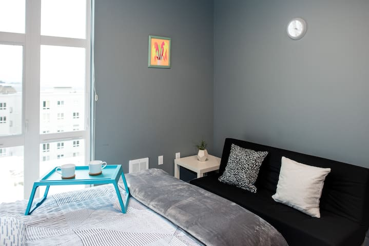 Walking distance to Pike Place and Space Needle!