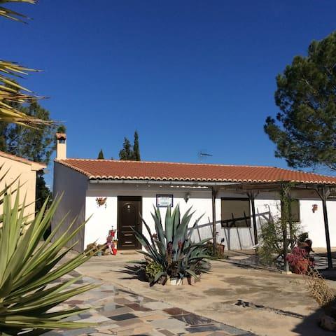 Casita near Xativa, Valencia - L'Alcudia de Crespins - Hus