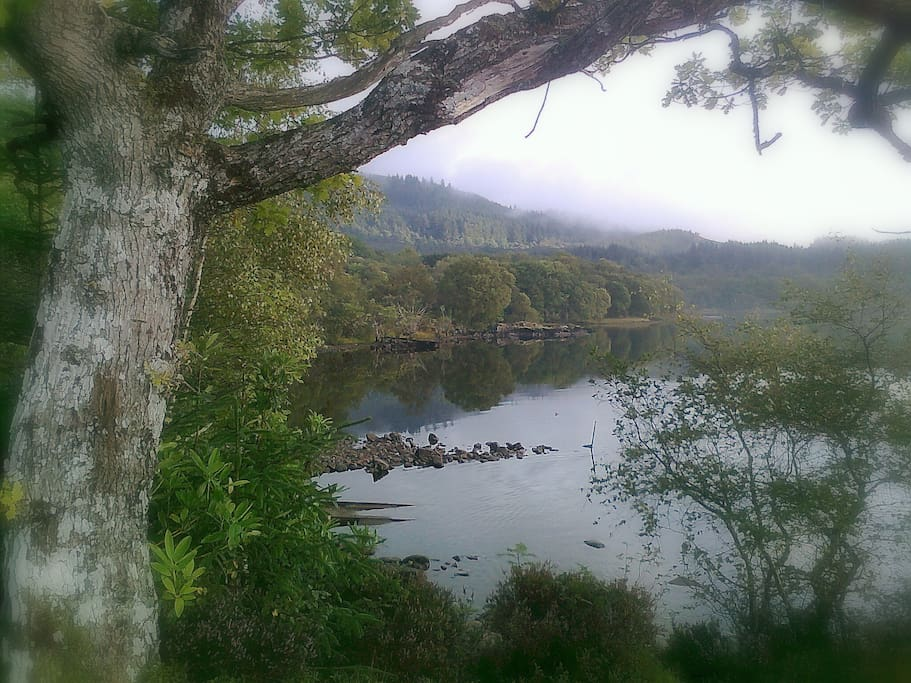 Nearby view of loch
