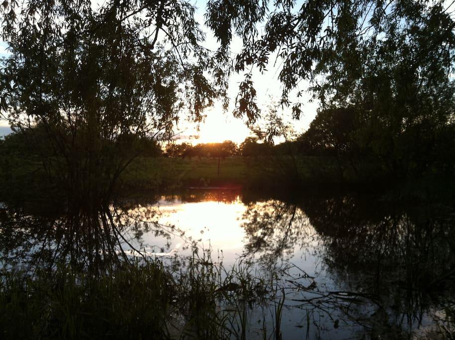 Solnedgang ved søen