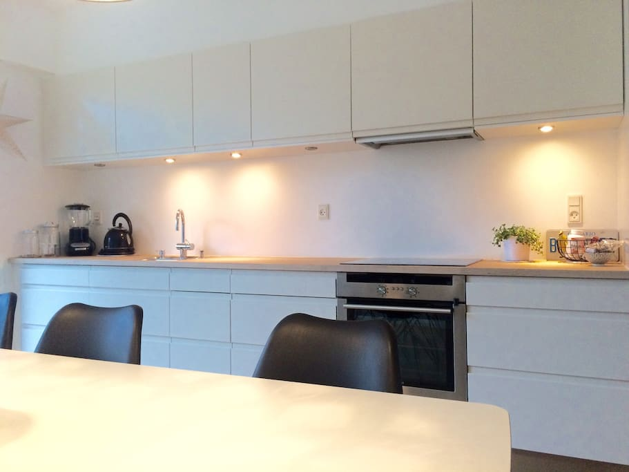 Modern kitchen with everything included