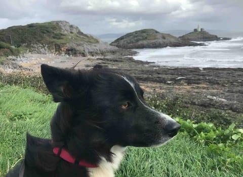BEACHCOMBERS~On Coastal Path~Dog Welcome~No Extras