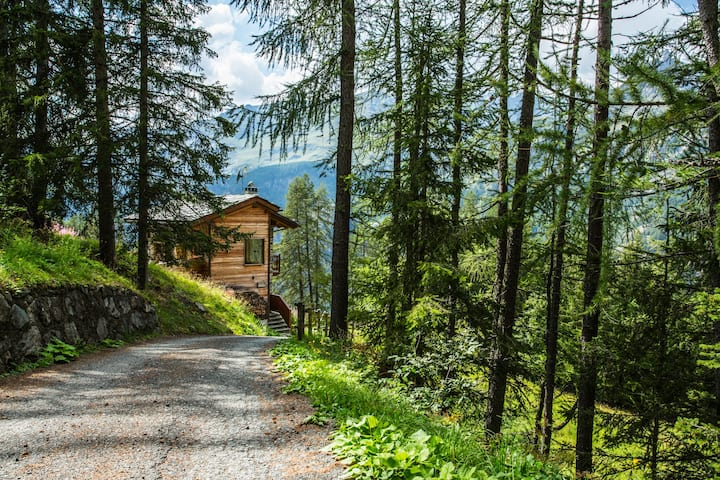 Chalet d'Alpage SkiChalet with boot warmer 7 pax