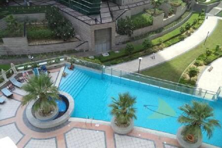 DXB - Dubai - Apartemen