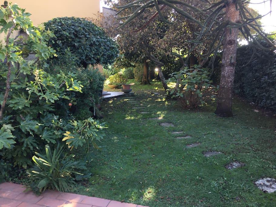 Particolare del giardino.