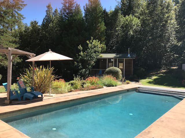 Pool with studio cabin in background