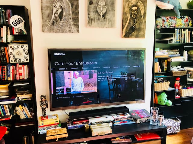 Big HD TV with AppleTV and Amazon Fire!