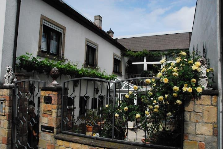 Ruhige Ferienwohnung in Wachenheim