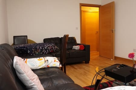 Cozy, big, new and well located flat - Dublin