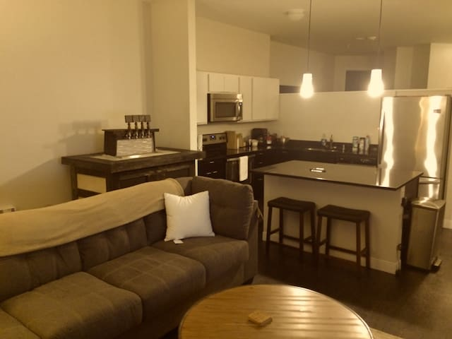 SPECTACULAR DOWNTOWN MKE APT.