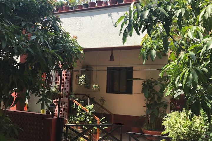 Green Dot in a City - a Verdant Peaceful Home Stay