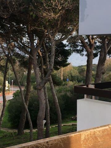 Monolocale vista mare Stintino - Stintino - 公寓