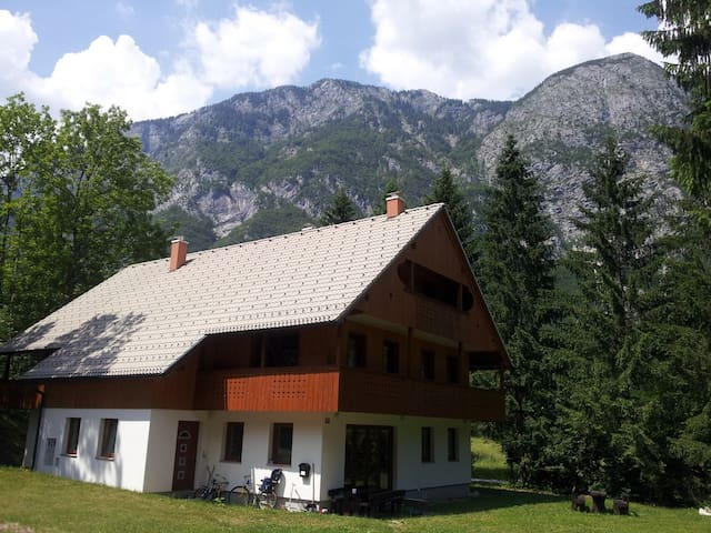 Comfort Apartment Lake Bohinj - Ukanc - Apartment