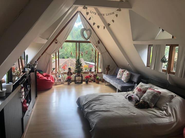 Hermosa y amplia habitación privada con baño!