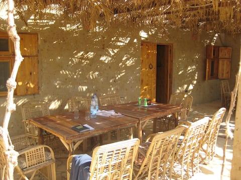 Desert Rose Eco Lodge, Hostel in the Oasis