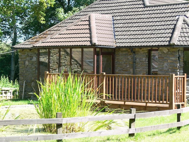 Barn Owl Lodge - Secluded 4 bedroom woodland cottage. Dogs welcome.