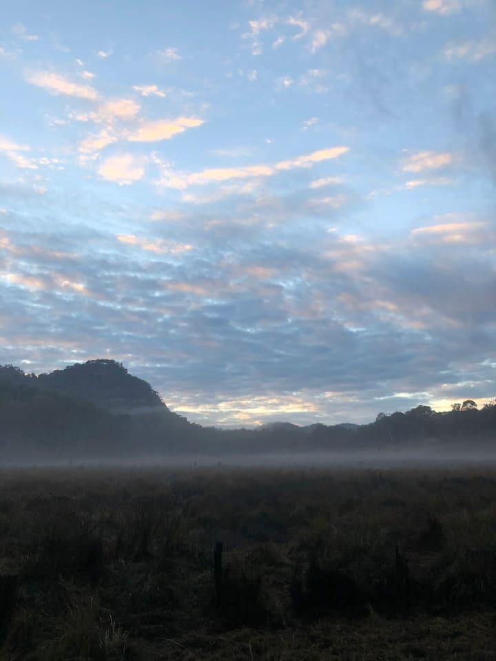 An early morning mist on Coxs Creek Rd, Rylstone.