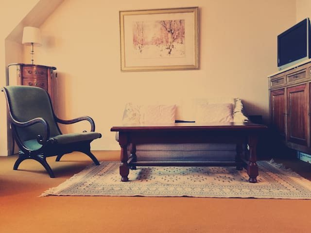 French Charming Old School Sunny Apartment - 20min from PARIS by Public Transport