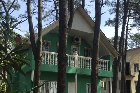 Beach House in Grigoleti