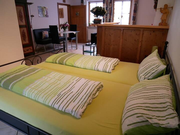 Weingut & Ferienwohnungen Kirch (Nordheim am Main), Appartement Riesling